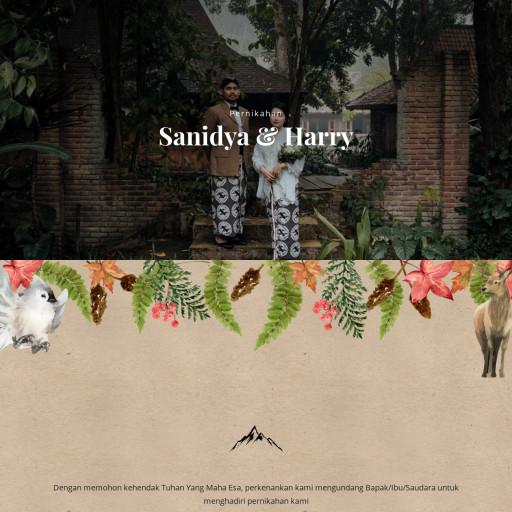 Sanidya & Harry