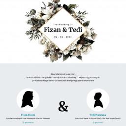 Fizan & Tedi